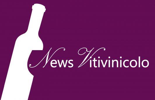 News Vitivinicolo